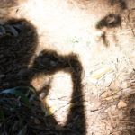 A sombra do fotógrafo