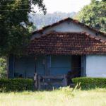 Vida rural